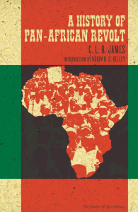 A History of Pan-African Revolt (e-Book)